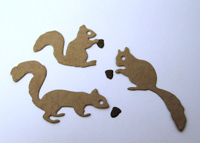 3pc Squirrel and Acorns Metal Cutting Die for Card Making