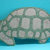 Turtle Metal Cutting Die