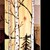 Birch Tree Art,nature art, cabin decor, tree of life art, wood art,