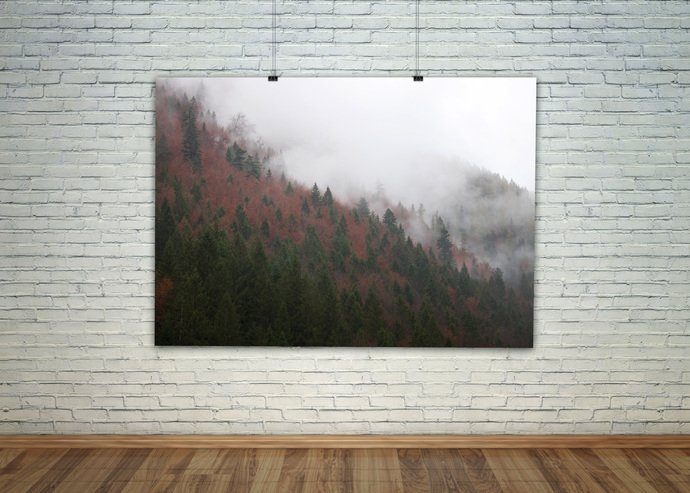 Nordic Art, Scandinavian Art, Pine Trees, Forest Photography, Foggy Forest,