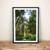 Evergreen Art, Forest Print, Nature Photography, Wanderlust Print