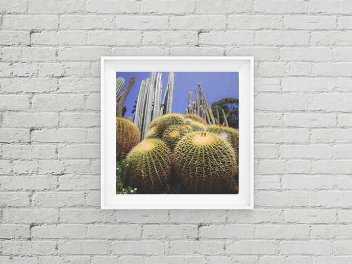 Cactus Print, Bohemian Wall Print, Cacti Poster, Cacti Wall Art, Cactus