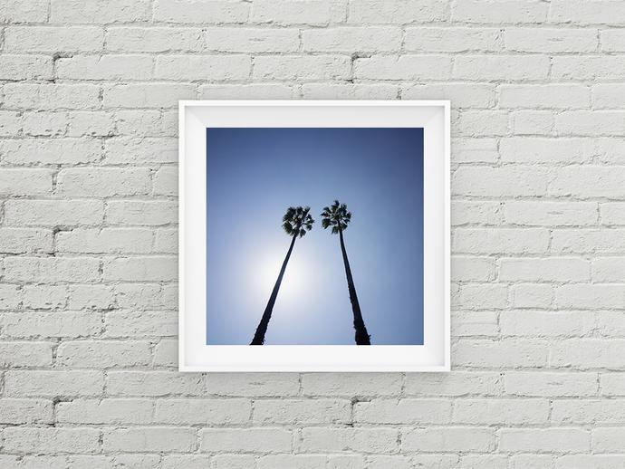 Palm Tree Print, Palm Tree Decor, Shore Art Print, Palm Tree Photo, Bohemian