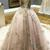 Ball Gown Court Train Deep V Neck Sleeveless Layers Tulle Appliques Prom