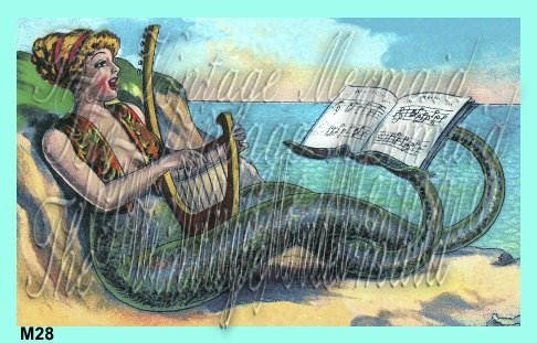 Cotton Fabric Block Victorian Musical Mermaid Postcard  Double Fin Use For Arts,