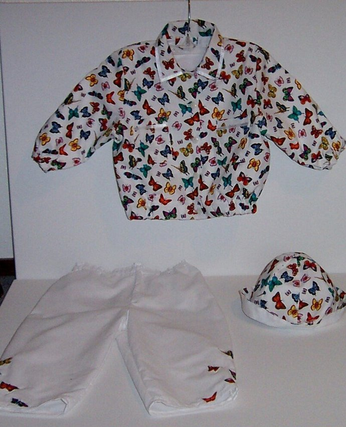 THREE PIECE outfit with butterflies boy or girl jacket pants hat  sz 2T-3T