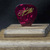 JASON ALDEAN: commemorative guitar pick and display case