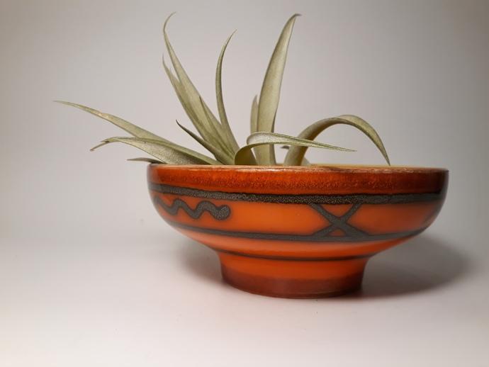 Groovy bowl. Flora Gouda Holland, decor Tokio