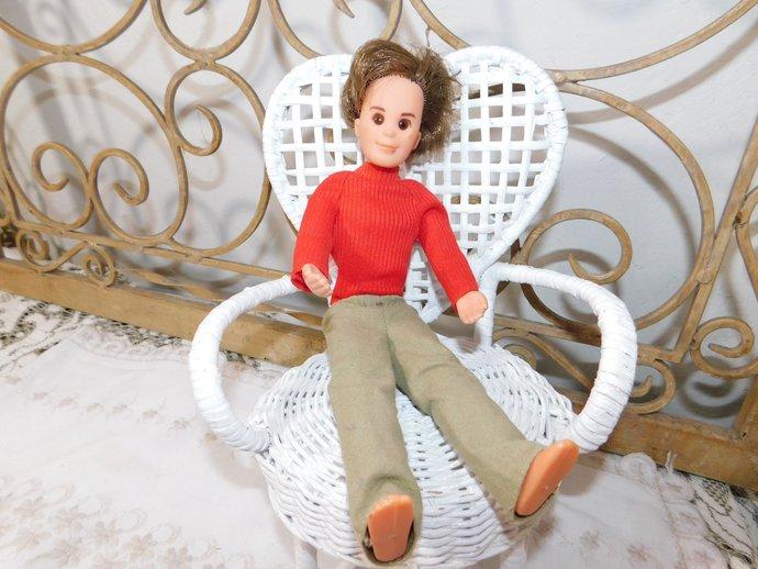 Sunshine Family Steve Doll By Mattel, Sunshine Doll, Mattel Jointed Doll, Mattel
