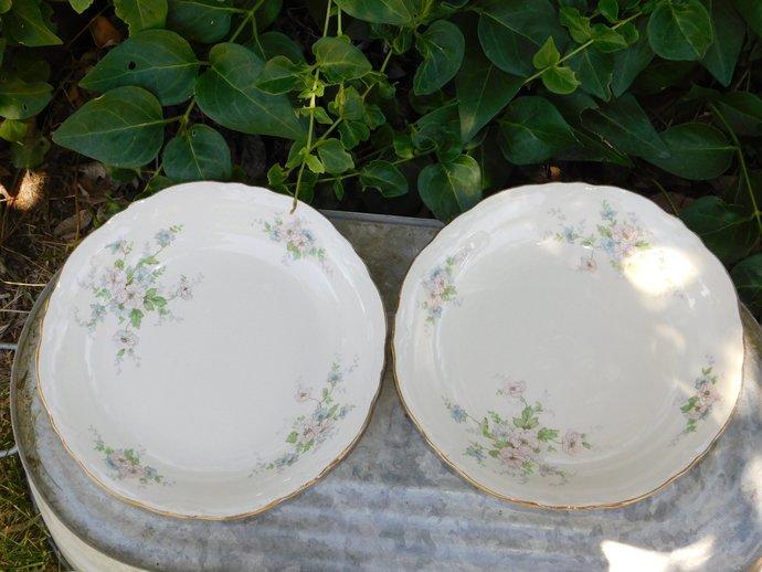 Homer Laughlin Small Bowl set 2, Pink & Violet Flowers, C46N6, Vintage China,