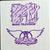Authentic Backstage Pass: Aerosmith / MTV