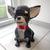 Papercraft chihuahua sculpture | DIY pet décor | 3D animal sculpture | Printable