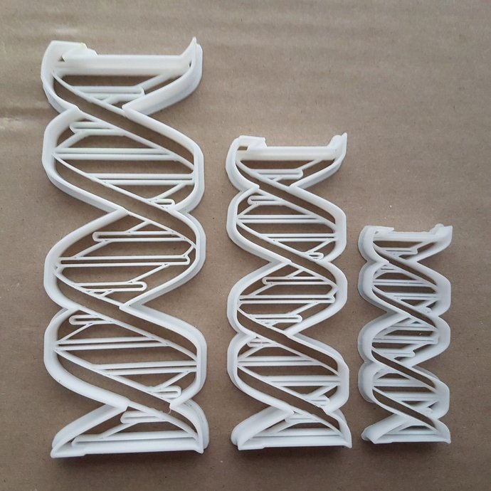 DNA Genetic Organism Human Body Shape Cookie Cutter Dough Biscuit Fondant Sharp