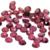 4mm Rhodolite Garnet Rose Cut Cabochon - 3 pieces