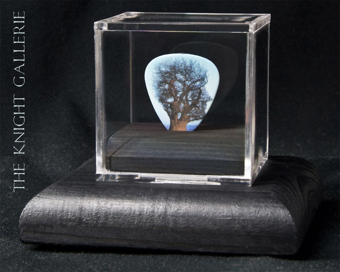 Commemorative guitar pick and display case: Pink Floyd