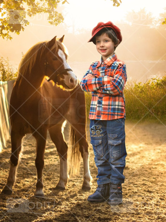 Baby Horse Digital Backdrop, Foal, Pony, Sunset, Digital Background,