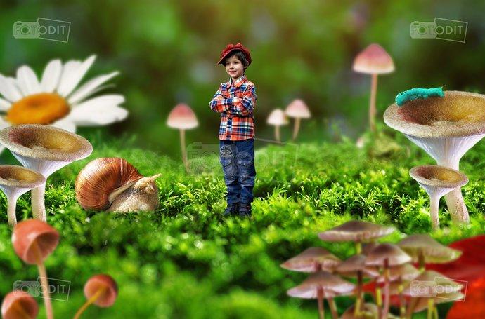 Alice, Wonderland, Digital backdrop, background, blue caterpillar, fantasy,