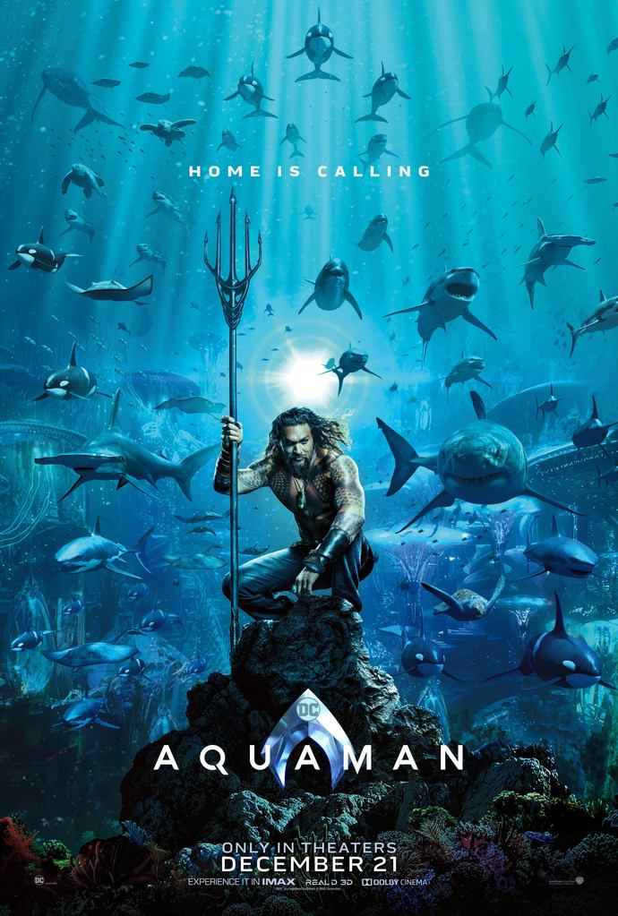 "Aquaman Polyester Fabric Poster (13""x19"" or 18""x28"")"