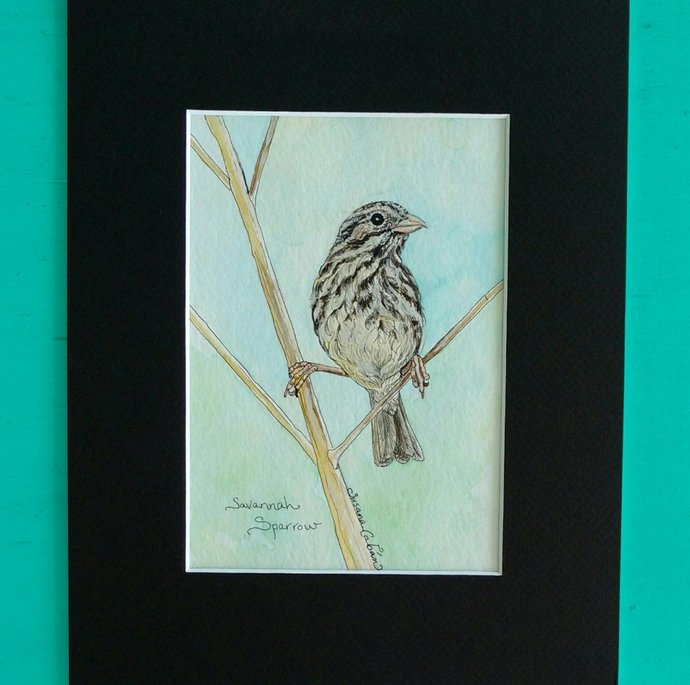 SAVANNAH SPARROW, Original Watercolor Painting on Paper by Susana Caban, Bird