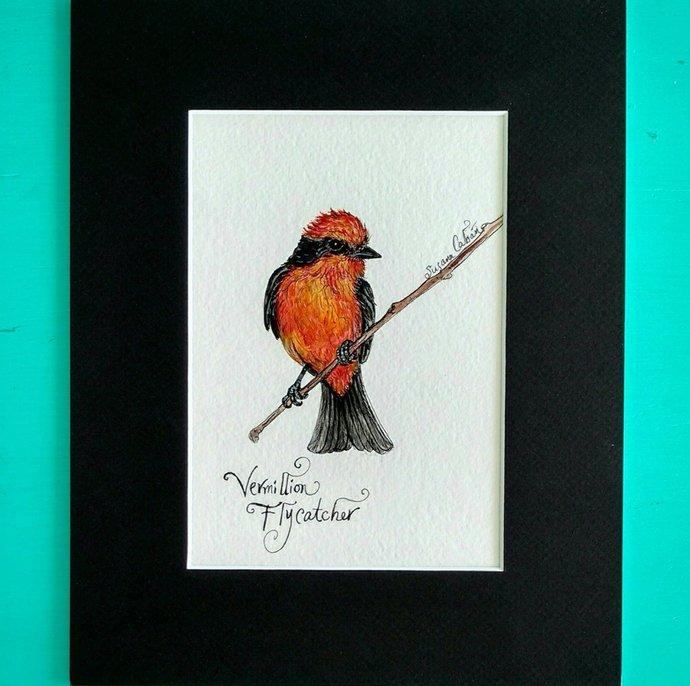 VERMILION FLYCATCHER, Original Watercolor Painting on Paper by Susana Caban,