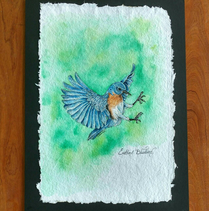 EASTERN BLUE BIRD, Original Bird Painting in Watercolor on Cotton Paper by