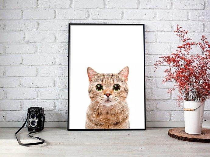 Digital Cat Print, Digital Printables Wall art prints, Digital Color Home