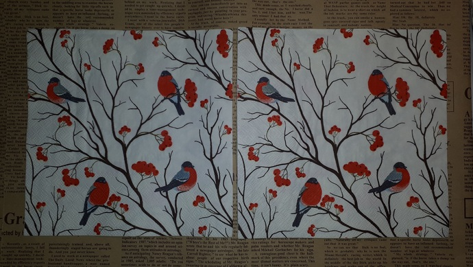 N141 Paper Napkins (Pack of 2) Birds Red Robins, Branches Red Flowers