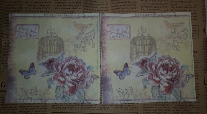 N153 Paper Napkins (Pack of 2) Bird Cage Red Roses Blue Butterfly Floral Cream