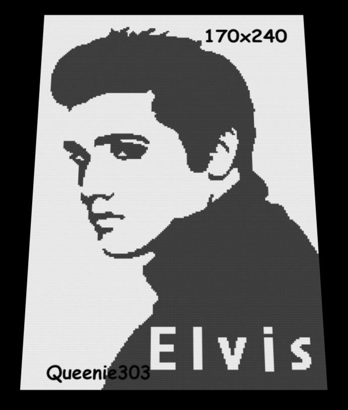 Elvis 170x240