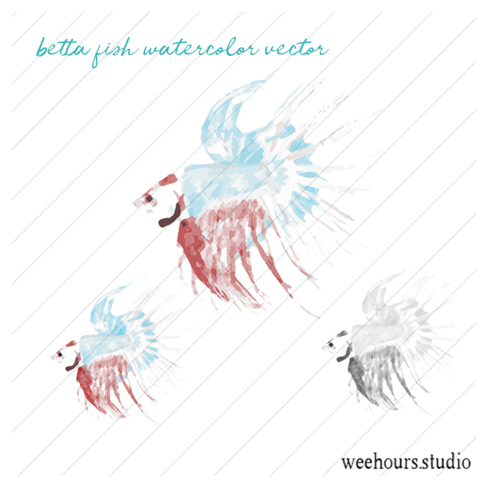 Betta fish watercolor vector for digital scrapbooking, stamps, stationery,