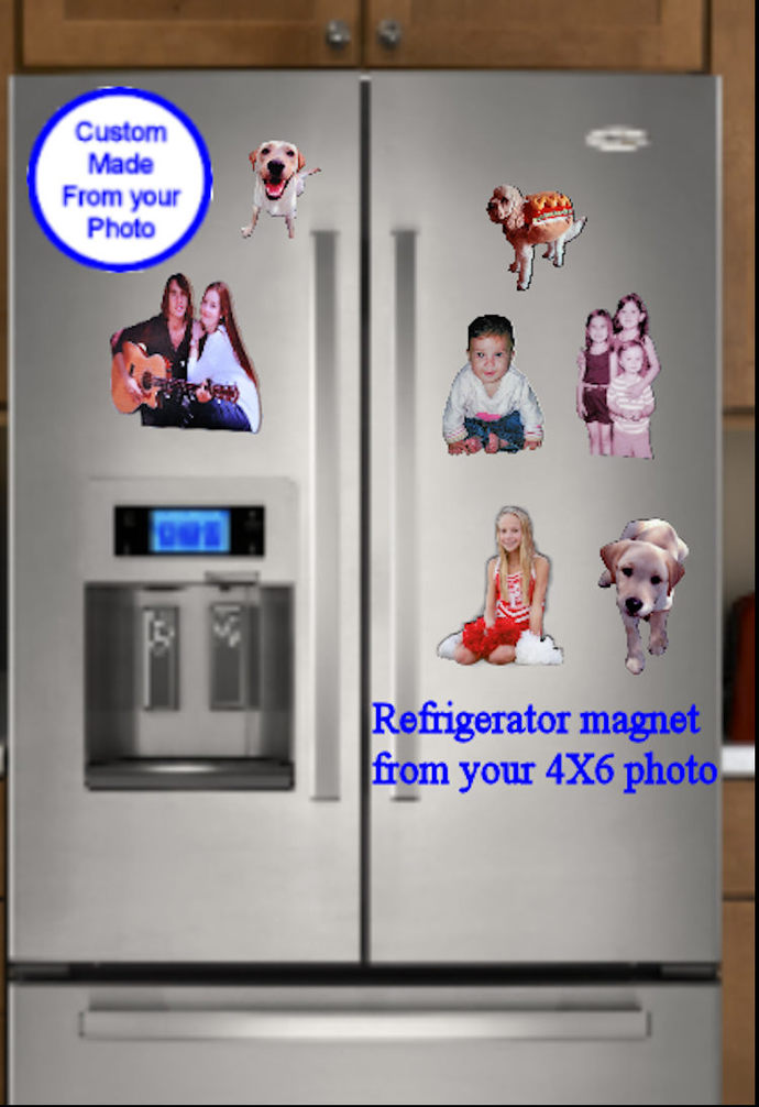 Custom Refrigerator Magnets Photo Cut outs of your Dog, Cat, Child Photo, Value