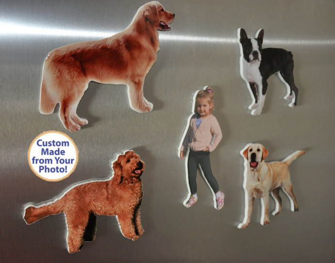 Classic Custom Refrigerator Magnets Photo fridge magnets Cutouts from your Dog,