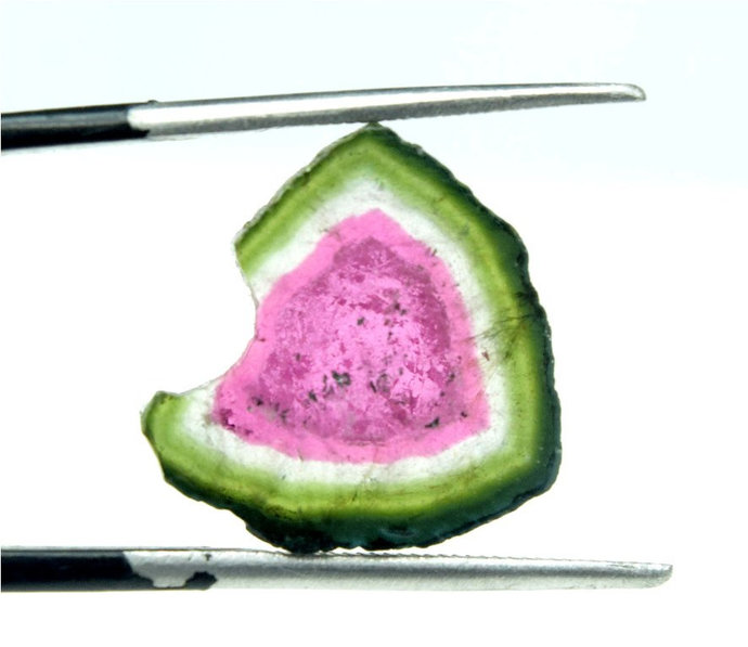 MP02-264    9.45 Carats Watermelon Tourmaline Slice from Paprok - 15*14*04 mm