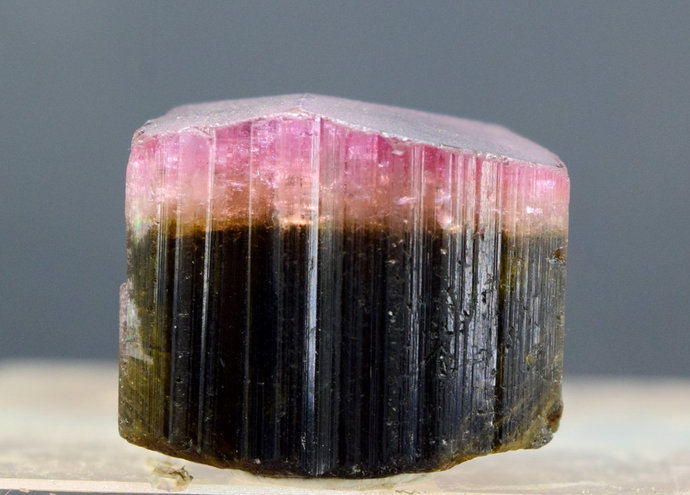 20.47 Gram Terminated Bi Color Natural Tourmaline Crystal from Afghanistan -