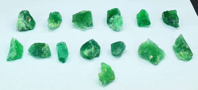 15 Pieces Lot of Green Color Kunzite Hiddenite Spodumene Rough Crystals For