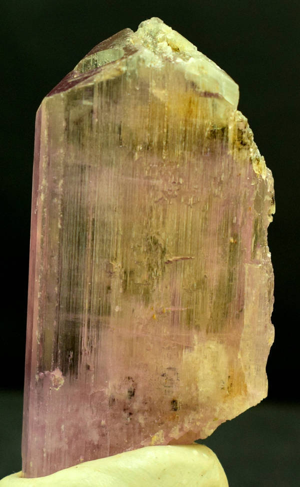 V Shape Terminated Natural  Pink Color Kunzite Crystal with Excellent Clarity ~
