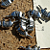 Armadillo Pewter Beads 10-1013