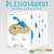 Amigurumi Crochet PDF Pattern - Plesiosaurus (Plesiosaur Marine Dinosaur) /