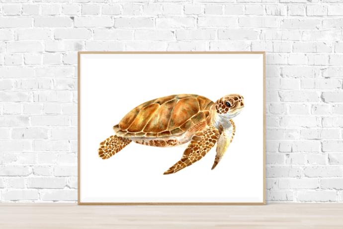 Turtle Print, Turtle Gift, Sea Life Print, Animal Print, Prints Wall Art, Art