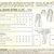 McCall 6299 Misses Pleated Skirt 40s Vintage Sewing Pattern Waist 28 Box Pleats