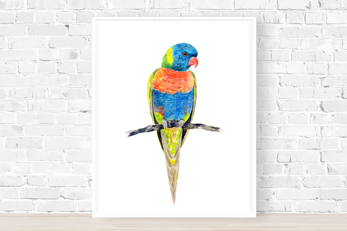 Rainbow Lorikeet Print, Watercolour Parrot, Australian Bird Art, Rainbow Parrot,