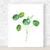 Pilea Print, Pilea Peperomioides, Watercolour Pilea Print, Watercolour Leaves,