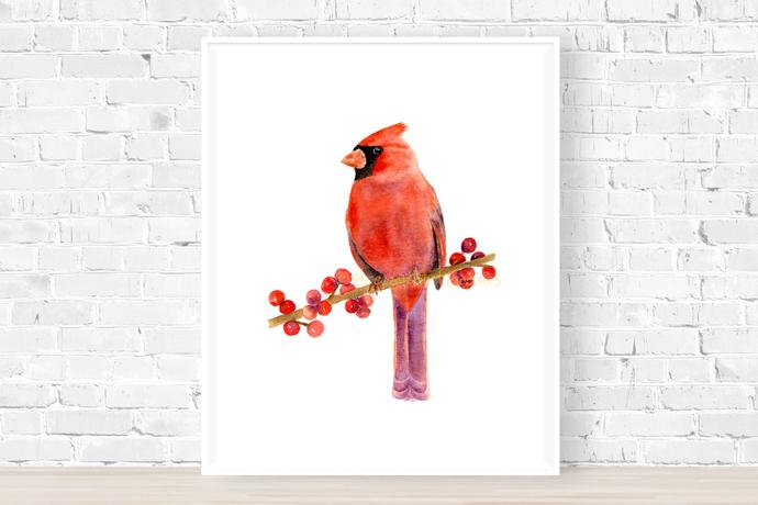 Northern Cardinal Print, Watercolour Redbird, Bird Illustration, Christmas Art,