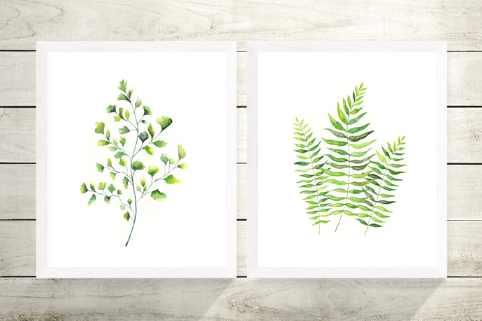 Set of 2 Ferns Prints