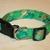 Green & Gold Shamrocks Adjustable Dog Collars & Martingales & Leashes