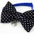 Black and White Polka Dot Bow Tie for Cats and Dogs, Pet Photo Props