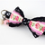 Roses and Lace Adjustable Collar for Cats and Dogs, Pet Accessories, Black,