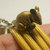 tiny Mushika Mouse mount rat of lord Ganesha ganesh hindu god of great beginning