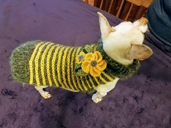 Dachshund Sweater, Hand knit, Bumblebee Sweater, Yellow and Gray Stripes, Spring