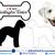 Bedlington Terrier - Dog Breed Decals (Set of 16) - Sizes in Description